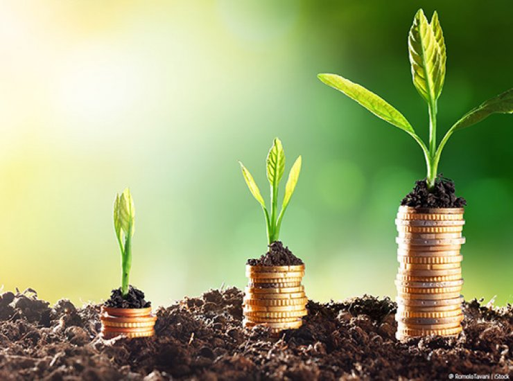 image of three stacks of coins with soil and a small seedling on top. The stacks get bigger as you move from left to right