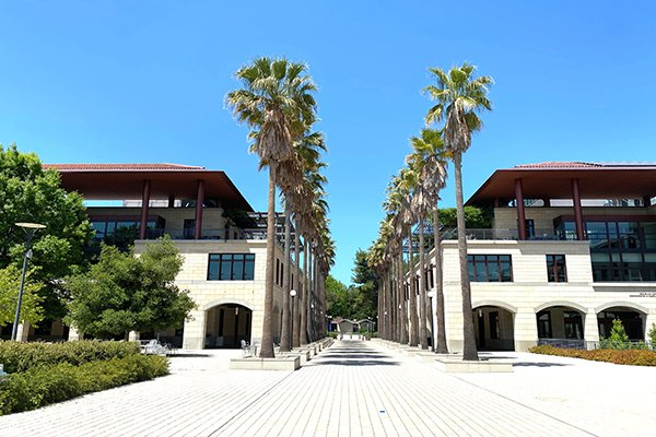 Stanford Engineering quad with palm trees