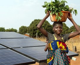 African woman carrying crops in front of solar panels