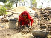 A woman in rural India gathers cow dung for fuel.